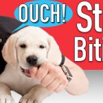 Relaxing Dog Music – Dog Anxiety Help, Solving Crying, Whining and Barking problems