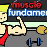 How to Build MUSCLE | 3 Fundamental Tips!