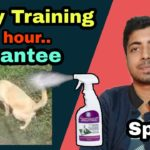 New technology - Potty training with spray in hindi 🔥🔥